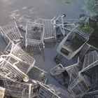 Shopping carts, future fish habitat?