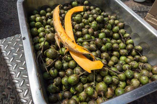 Quenepas, or Spanish lime, is a tropical fruit with a tart yellow pulp | Photo: Theresa Stigale