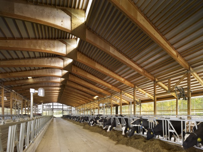 The Teaching Dairy Barn at Cornell University, gold medal winner at the 2013 AIA Design Excellence Awards | Photo: Halkin Mason Photography