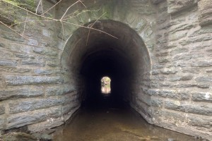 At the western end of the parcel, Cresheim Creek passes through a culvert under SEPTA's Chestnut Hill East Line | Photo: Bradley Maule