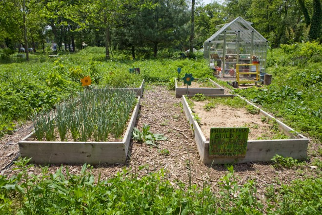 Others such as Mt. Airy's High Point Cafe and, seen here, the Philadelphia Guild of Handweavers, maintain plots on the farm at Awbury   Photo: Bradley Maule