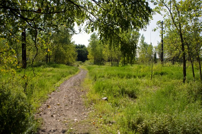 An access trail leads from Orthodox Street to the Delaware River through the former Coke Company site | Photo: Bradley Maule