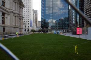 Less a Great Lawn, more a Patch of Grass | Photo: Bradley Maule