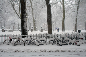 Center City snow magic: Rittenhouse Square in an 11-inch snowstorm, February 2006