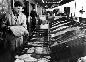 David Mink picking up some fluke on a run to the Philadelphia Wholesale Seafood Market in 1990 | courtesy of David Mink
