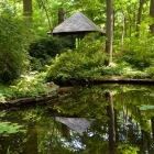 Cret's Teahouse and pond with natural spring