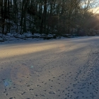 First light on Wissahickon Creek, with the paw prints of woodland ice dancers