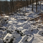 Wises Mill Run, coated in marshmallow fluff