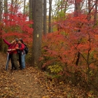 Fall foliage selfies on the Yellow Trail