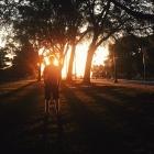 rachel.hara | Benjamin Franklin Parkway