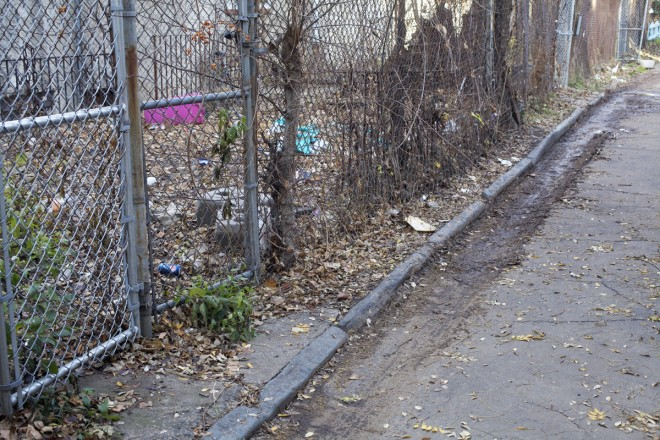 Backyard fences encroaching on the western side of Opal Street | Photo: Peter Woodall
