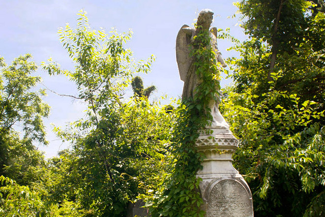 Mt. Moriah Cemetery | Photo: Dan Papa