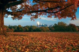 Philly Skyline, fantastic fall | Photo: Bradley Maule
