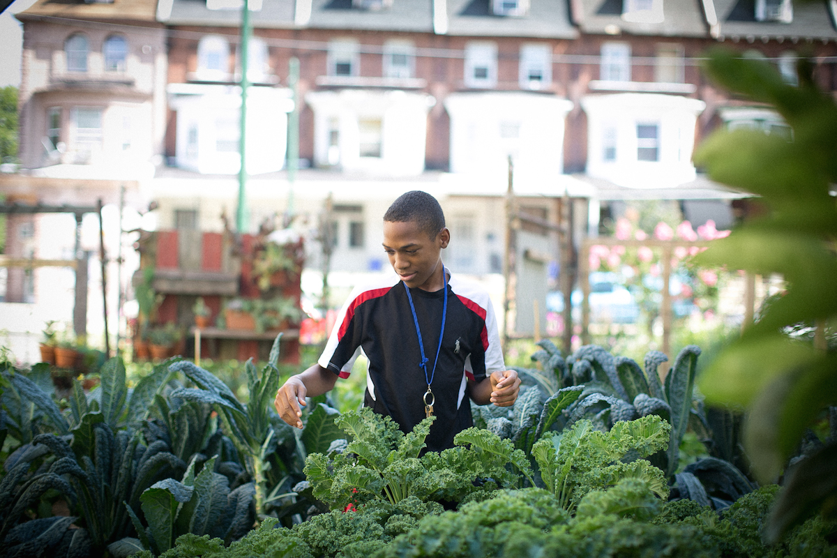 Urban Farmers Look To Land Bank For Help Holding On To Property