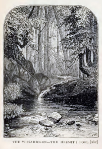 "Devil's Pool, incorrectly labeled as ""Hermit's Pool"" in 1872's Philadelphia and Its Environs, published by JB Lippincott & Co."