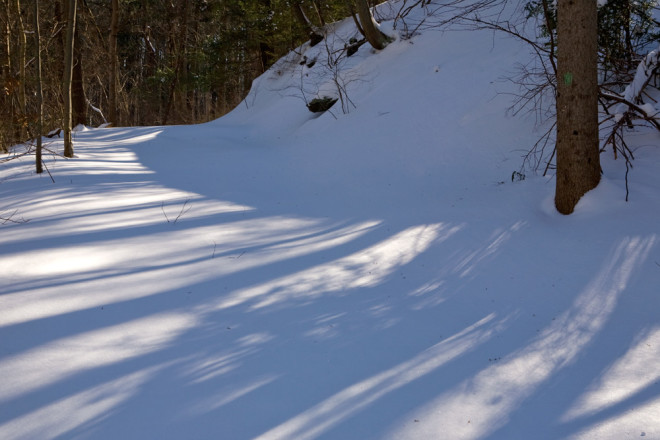 Popular mountain bike trail, the White Trail, buried under two feet of untouched snow