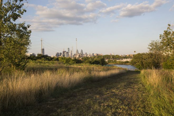 View of center city skyline from the meadow at Bartram's Garden.   Photo: Starr