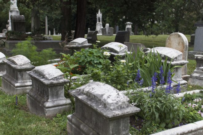 Woodlands Cradles: A new volunteer gardening program brings back the Victorian era of gardening in cemetery plots. | Photo: Starr