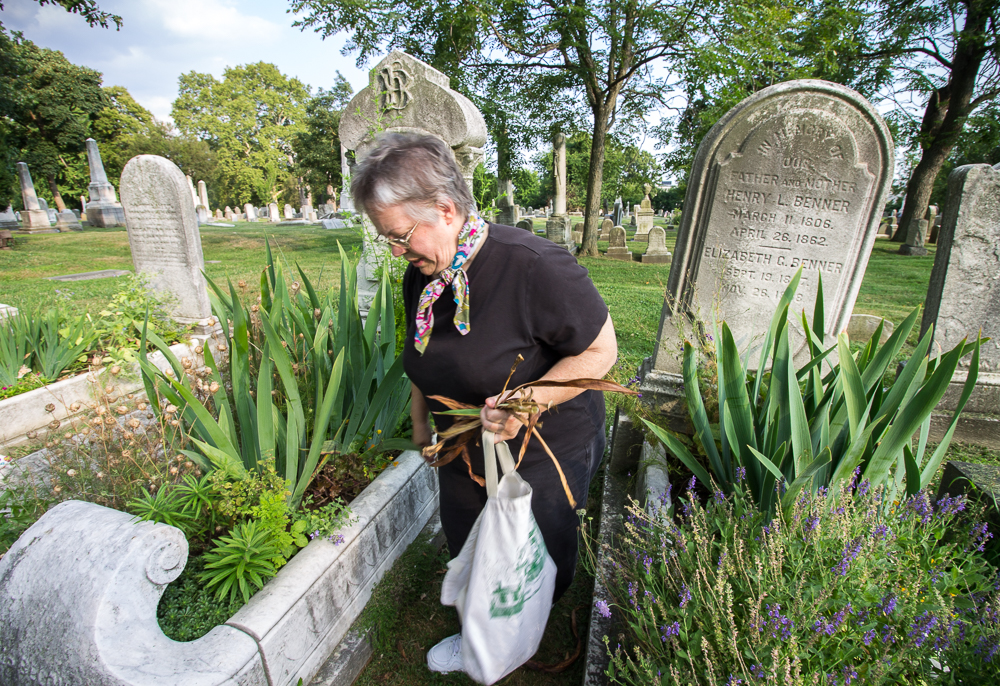 Gardeners Bring Cradle Graves Back From The Dead
