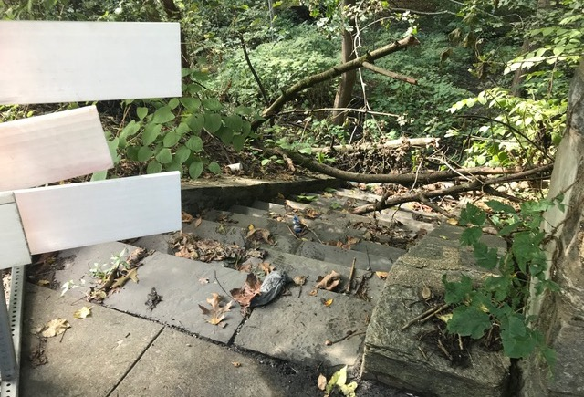 Secluded Stone Stairway On Lincoln Drive Revealed