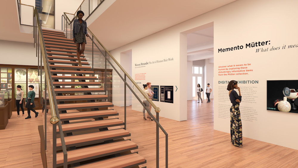 Growing Pains Yield Gains For The Mütter Museum